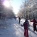 Ski de fond P5
